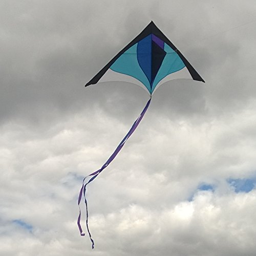 Finest Delta Kite For Kids Amp Adults Easy To Fly Large