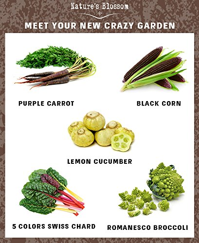 10 Creative Diy Vegetable Gardening Hacks: Grow 5 Spectacular Vegetables With Nature's Blossom Grow